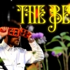 bees_10